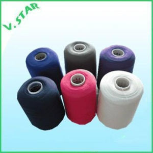 Nylon Stretch DTY Yarn, White and Black pictures & photos