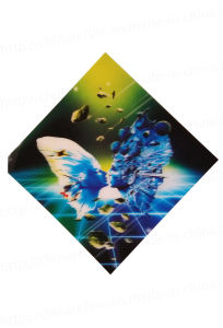 3D Lenticular Greeting Card (3D139) pictures & photos