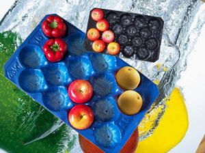 Tomato&Apple&Pear&Kiwi Fruit Packing Large Plastic Food Tray with Dividers pictures & photos
