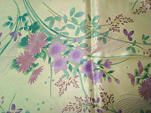 Printing Silk-Cotton Paj Fabric pictures & photos
