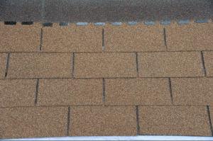 Colorful 3-Tab of Roofing Asphalt Shingle