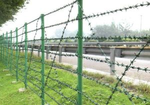 PVC Coated Galvanized Iron Barbed Wire for Fence pictures & photos