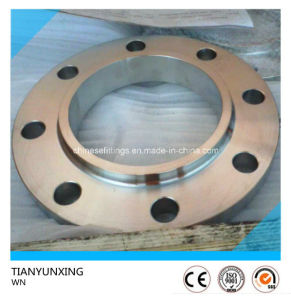 JIS F304 Stainless Steel Weld Neck Flange pictures & photos