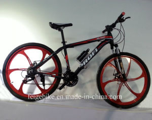 2015 Hot Sale Alloy Frame Mag Wheel Mountain Bicycle (FP-MTB-A074) pictures & photos