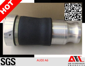 Air Suspension Auto Shock Absorber for Audi A6 (USA Style) pictures & photos