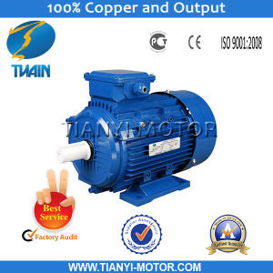 Brushless Three Phase AC Induction Motor pictures & photos
