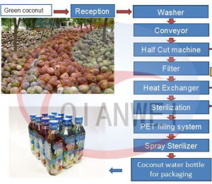 Tender Coconnut Water Process Machine (QW-TK-CW) pictures & photos
