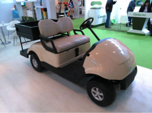 CE Approved Dongfeng 2 Seater Electric Golf Cart with Cargo Box for Sale pictures & photos
