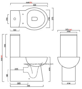 Two Piece Ceramic Toilet Ce Washdown Water Closet Wc T16001 pictures & photos