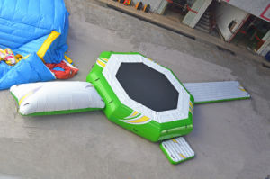 Water Park 3-in-1 Inflatable Water Bouncer for Jumping Game pictures & photos