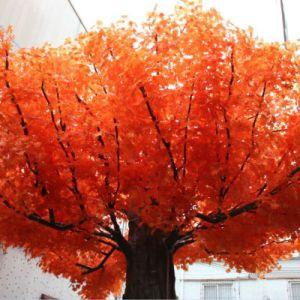 Dongguan Wholesale Fiberglass Real Trunk Evergreen Fake Artificial Maple Tree pictures & photos