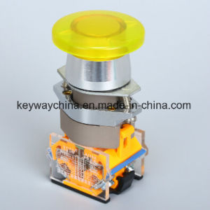 PC Push Button Switch with Ce pictures & photos