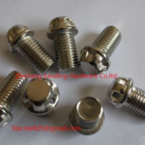 Stainless Steel 304 12-Point Hex Flange Bolt pictures & photos