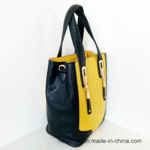 Wholesale Guangzhou Manufacturer Ladies PU Handbags (NMDK-042804) pictures & photos