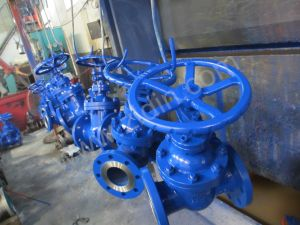 DIN Standard Cast Steel Wcb Pn25 Z45h Non-Rising Stem Gate Valve for Metallurgical pictures & photos