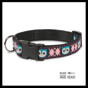 Personalised Nylon Woven Pet Dog Collar with Custom Pattern pictures & photos