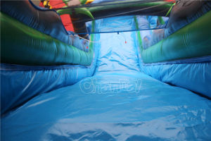 Tropical Inflatable Water Slide for Sale Chsl528 pictures & photos