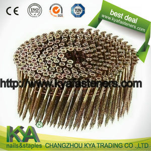15 Degree Torx Head Nail Collated Screw pictures & photos