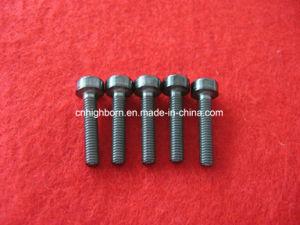 Zro2 Zirconia Ceramic Screw Nut and Bolt pictures & photos