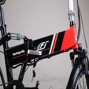 Lady Folding Electric Bicycle with Factory Price pictures & photos