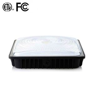 100W LED Canopy Light pictures & photos
