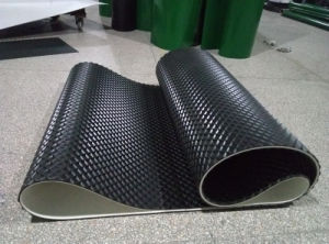 PVC Conveyor Belt for Food Indsutrial pictures & photos