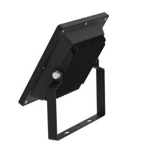 New Floodlight Light LED Projector, Portable COB 10W Floodlight with Ce RoHS pictures & photos