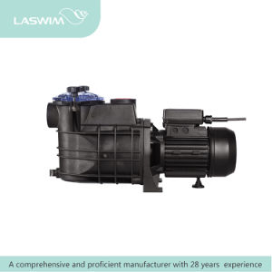 China Manufacturer Pool Pump pictures & photos