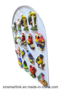 Sculpture Polyresin Souvenir Parrot Refridgerator Magnet pictures & photos