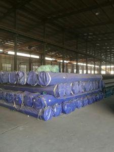 Carbon Steel Seamless Pipe (ASTM A106 GR. B/ASME SA106 GR. B/API 5L GR. B) pictures & photos