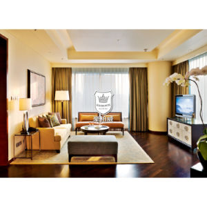 5 Star Hotel Complete Furniture Living Room Modern pictures & photos