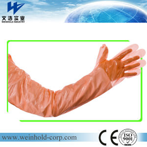 Disposable PE Shoulder Length Gauntlets for Veterinary Use pictures & photos