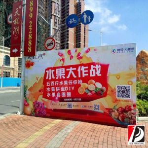 Outdoor PVC Flex Banner Advertising (VIN-08) pictures & photos