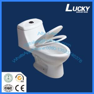 Econormic Porcelain S-Trap Dual Flushing Siphonic One Piece Toilet Jx-1# pictures & photos