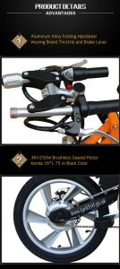 Full Suspension Aluminum Alloy Folding E Bike pictures & photos