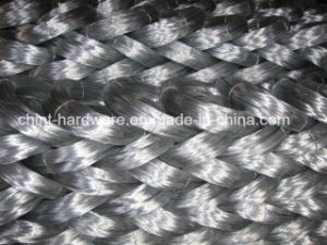 Galvanized Iron Wire Wire Mesh 12# pictures & photos