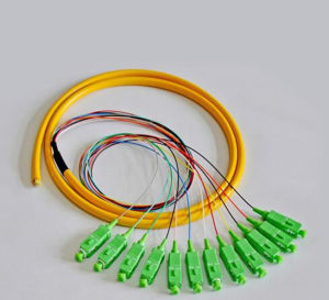 12 Core Sm Optical Fiber Pigtail 0.9mm Pigtail Cable with FC Sc LC St Connectors pictures & photos