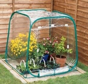 Mini Your Garden Plants Green House pictures & photos