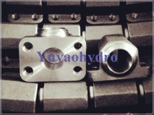 SAE Forged Steel Flanges with Flange Connection pictures & photos