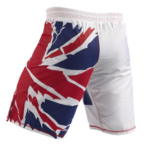 Custom Made MMA Fight Shorts Wholesale Arts Equipment Boxing Shorts pictures & photos