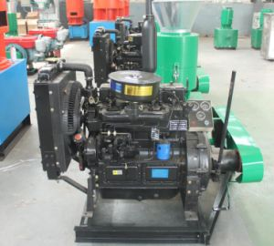 Various Kinds Materials Diesel Wood Pellet Mill pictures & photos