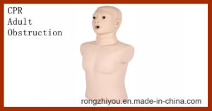 Advanced Adult Obstruction and CPR Training Model pictures & photos