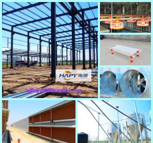 Automatic Poultry Machinery in Chicken House with Steel Construction pictures & photos