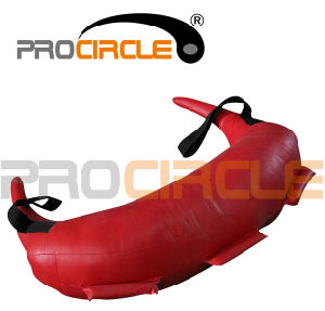 Gym Traning Professional Fitness Bulgarian Bag (PC-BB2034-2039) pictures & photos