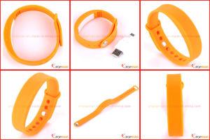 Fitbit Flex Belt Clip Pedometer, Manual for CE Pedometer pictures & photos
