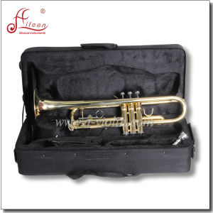 Golden Lacquered Brass Body Bb Key Student Trumpet pictures & photos