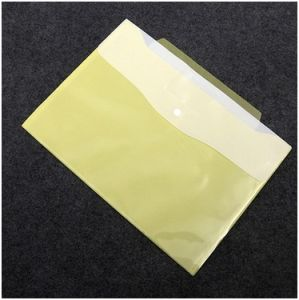 Translucent Plastic School PVC Bag