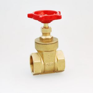 Brass Gate Valve (Hx-6101) pictures & photos