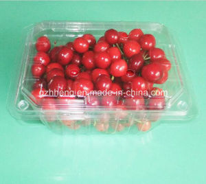 Custom Transparent Clear Plastic Food Container (PET tray) pictures & photos