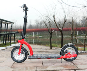300W36V Folding Electric Scooter for Adult pictures & photos